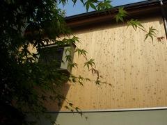 葉影とヒノキの外壁