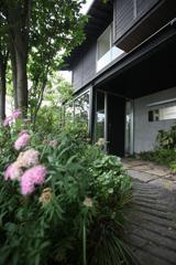 玄関アプローチは池のビオトープを抜けて。( 会社入口)