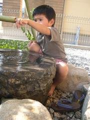 風流な「つくばい」も、子供には不思議な水浴び場