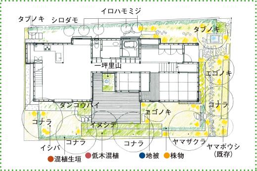 博多町家樹の図鑑